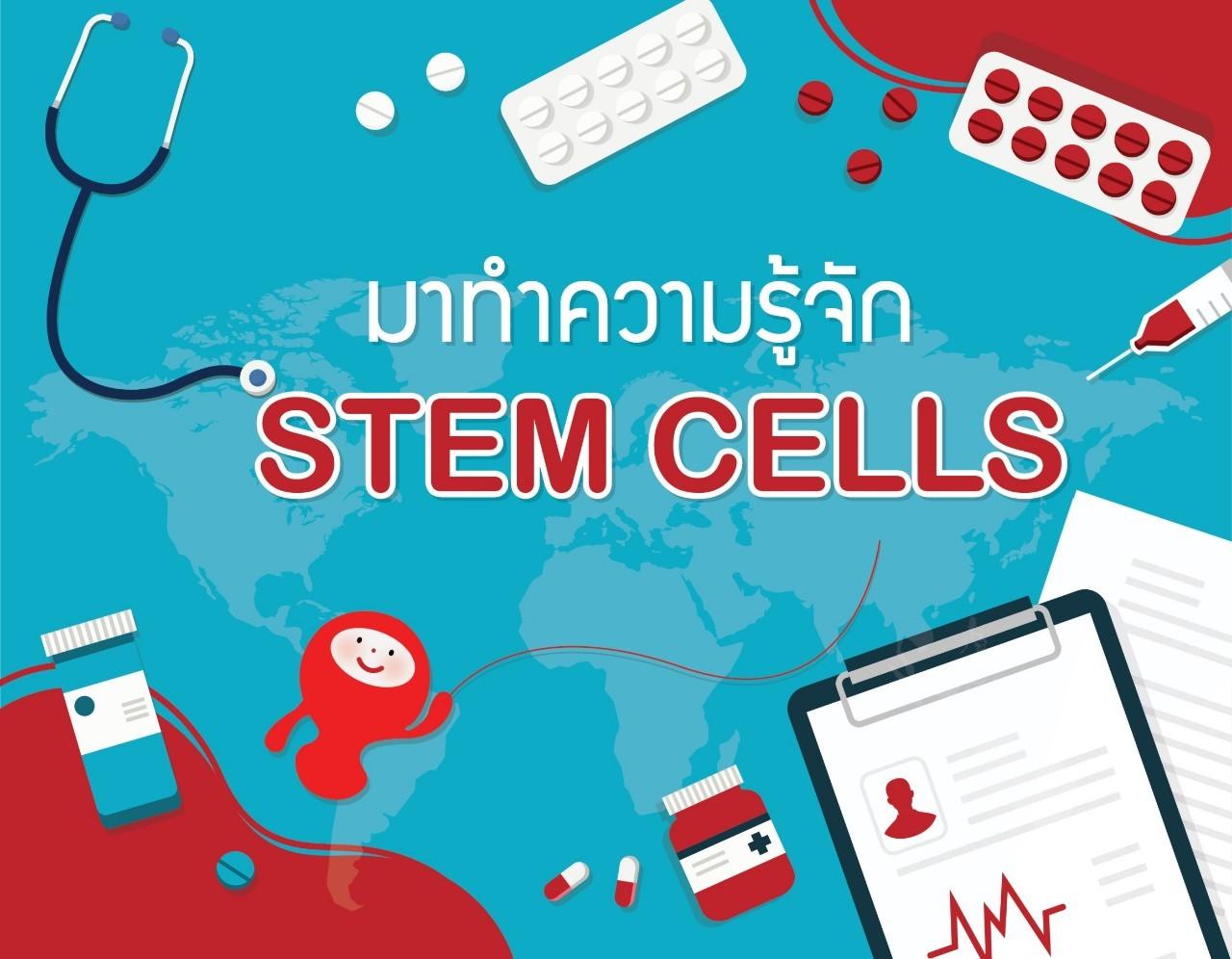 มาทำความรู้จัก STEM CELLS